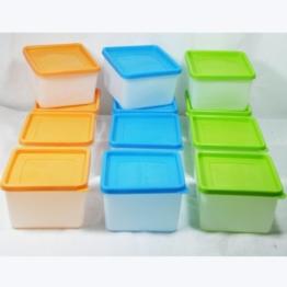 Gefriertruhe Test - 12 Stück Tiefkühldosen 0,7 Liter -40 °C bis +95 °C Gefrierdosen inklusive Gefrieretiketten - 1