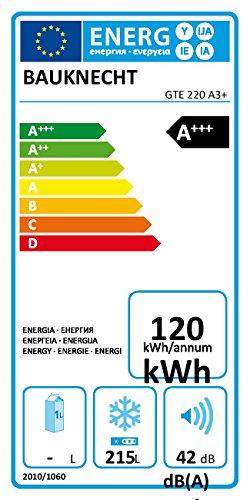 Gefriertruhe Test - Bauknecht GTE 220 A3+ Gefriertruhe / A+++ / Gefrieren: 215 L / weiß / Digitale Temperaturanzeige / ECO Energiesparen / Kindersicherung - 2