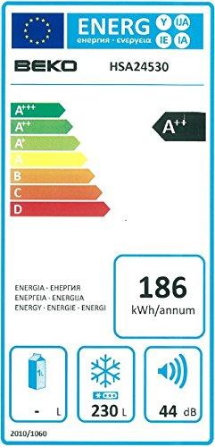Gefriertruhe Test - Beko HSA 24530 Gefriertruhe / A++ / 186 kWh/Jahr / Gefrieren: 230 L / Weiß / Türschloss - 2